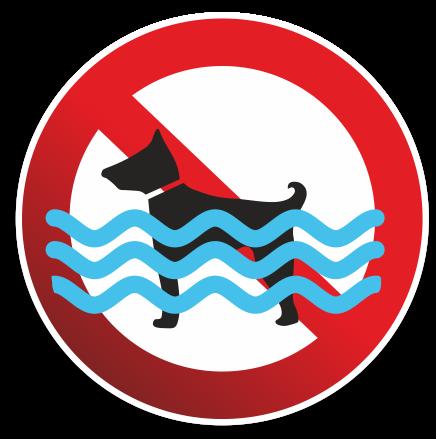 no dogswim 1